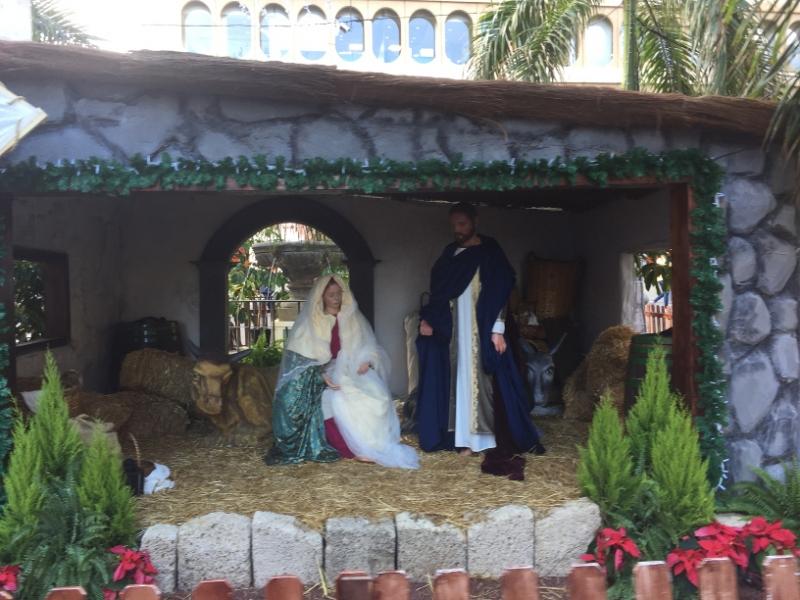 1188  1-12 nativity